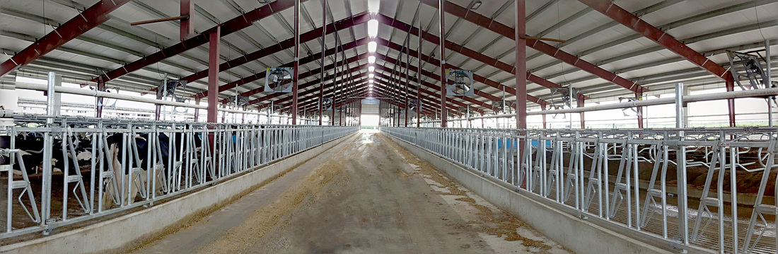 Category Freestall Barn